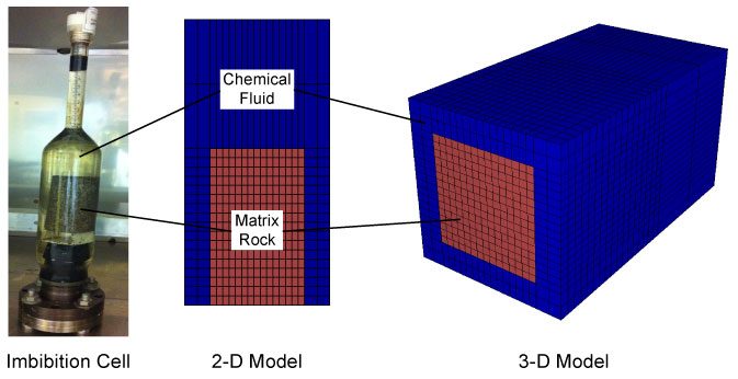 imbibition cell 2d and 3d models